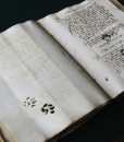 dnews-files-2013-04-Medieval-manuscript-with-paw-prints-660×433-jpg